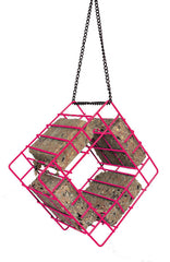 Suet Quad Bird Feeder-Rose