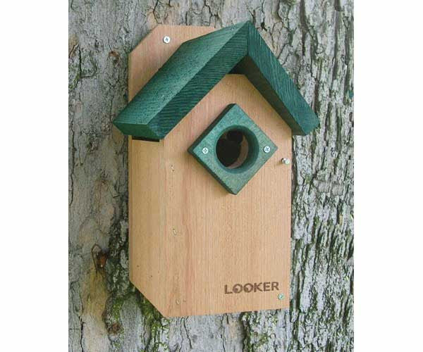Green Roof Bluebird House-NABS Approved