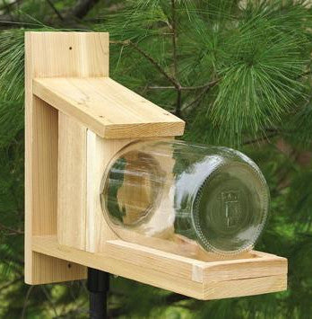 Songbird Cedar Squirrel Jar Feeder
