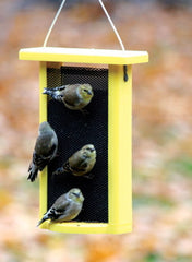 Recycled Nyjer Feeder by BirdsChoice