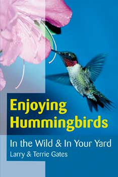 Enjoying Hummingbirds In the Wild & In Your Yard