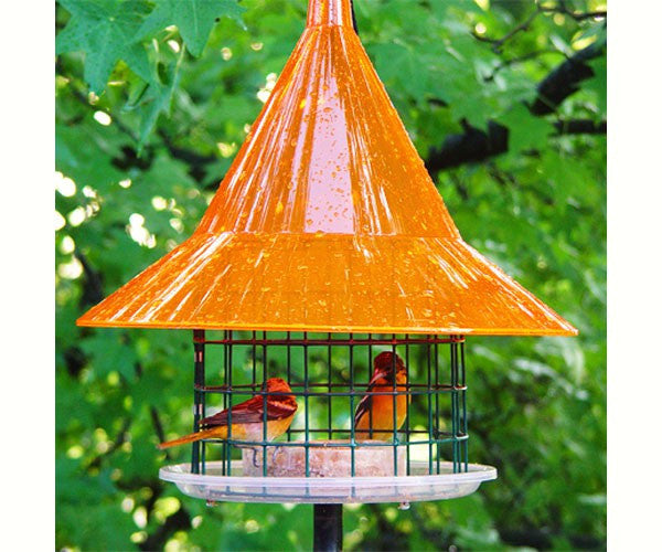 Sky Cafe Oriole Feeder