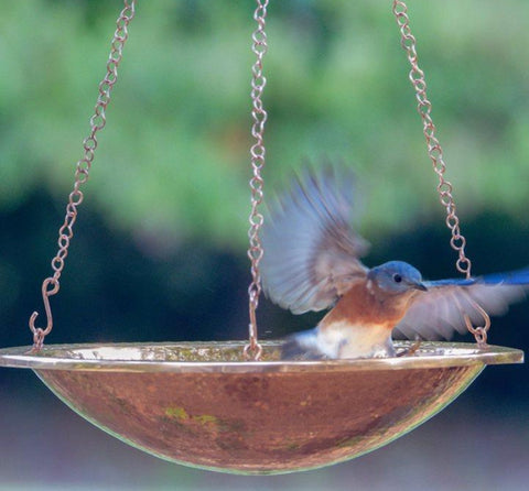 Solid Copper Hanging Bird Bath