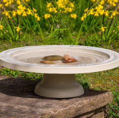 Stone Bird Bath with Steps