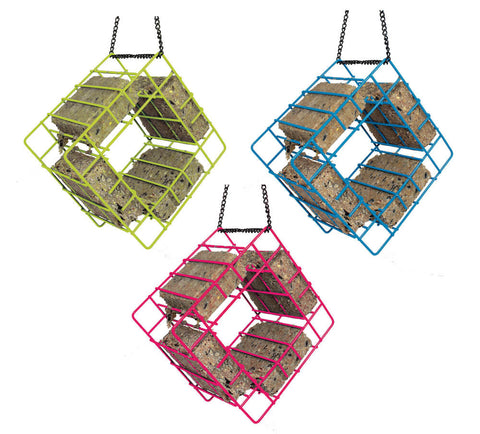 Suet Feeder Quad