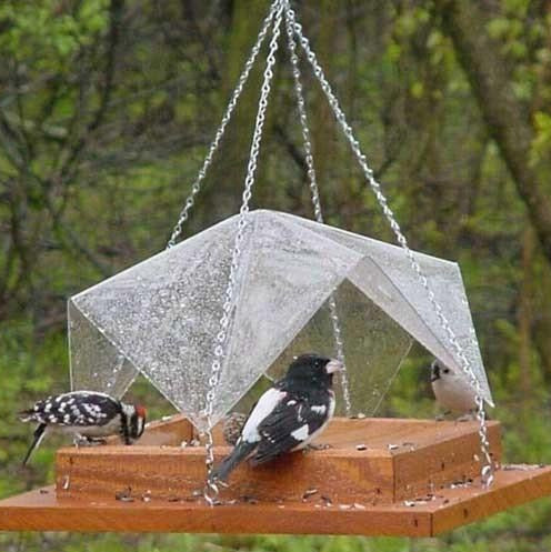 Super Tray Hanging Bird Feeder with Clear Cover