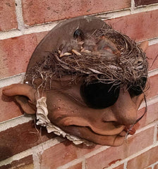 Troll Wall Planter with Baby birds