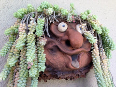 Troll Wall Pocket Planter for Succulents