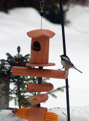 Pippin Handcrafted Suet Feeder & More