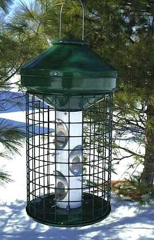 Deluxe Large Capacity Squirrel-Proof Feeder-3 Gal