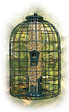 Caged Squirrel Proof Bird Feeder - 2 lb. by Woodlink