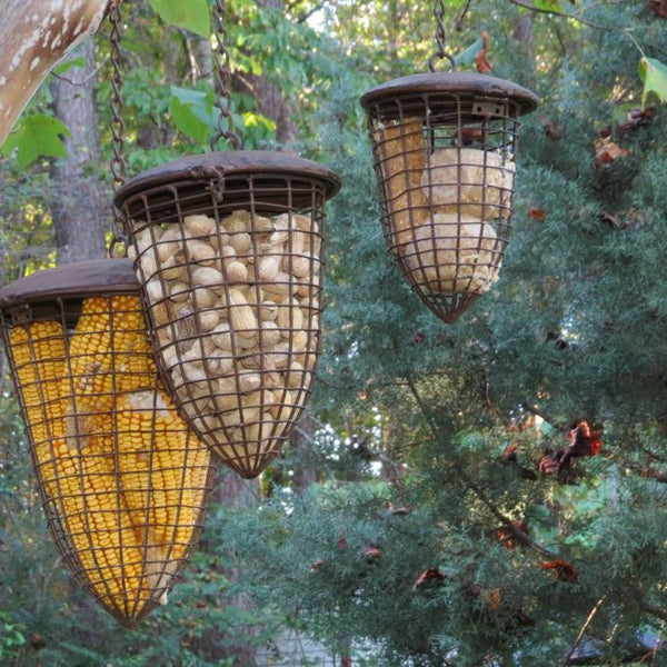 Iron Basket Feeders Set 3 For Birds Squirrels Amp Nesting