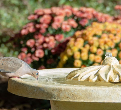 Birdbath Bubbler Fountain