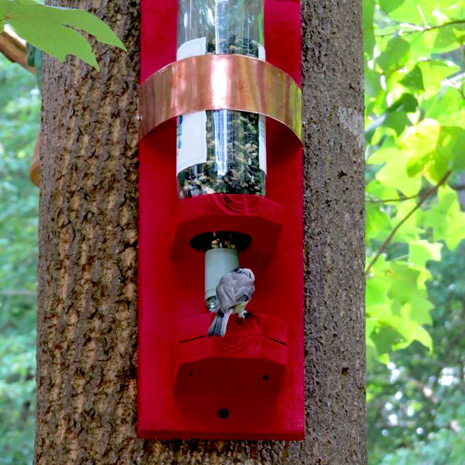 Bottle Bird Feeder-Handmade
