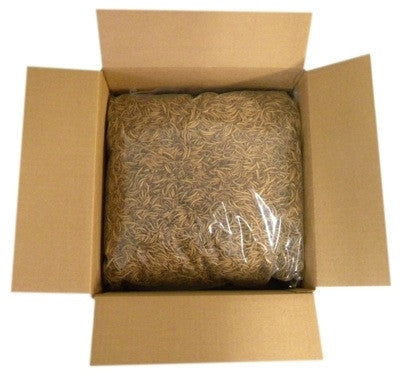 Bulk Dried Mealwoems for Bluebirds- 5 lb. Box