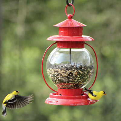 Red Lantern Wild Bird Feeder