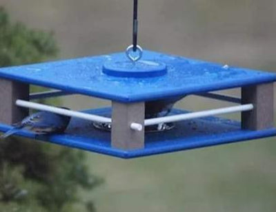 Hanging Feeder Comes in Blue