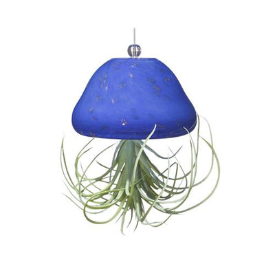 Jellyfish Air Plant Hanger- Blue