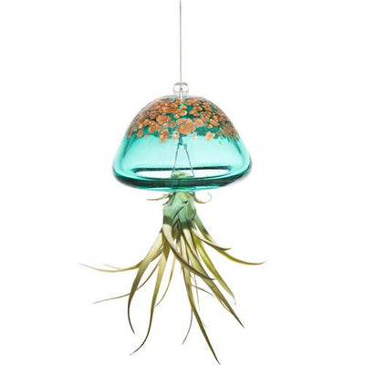 Jellyfish Air Plant Hanger- Green
