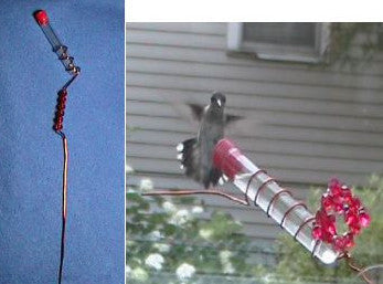 Charmer Hand-Held Hummingbird Feeder Set