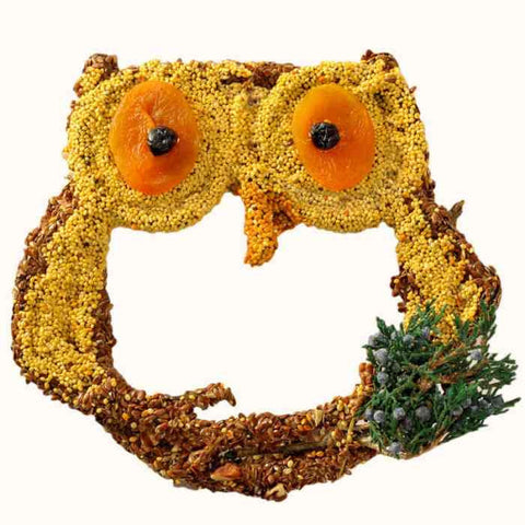 Big Owl Bird Seed Treat-Grapevine Form