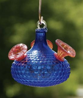 Radiance Hummingbird Feeder by BirdBrain