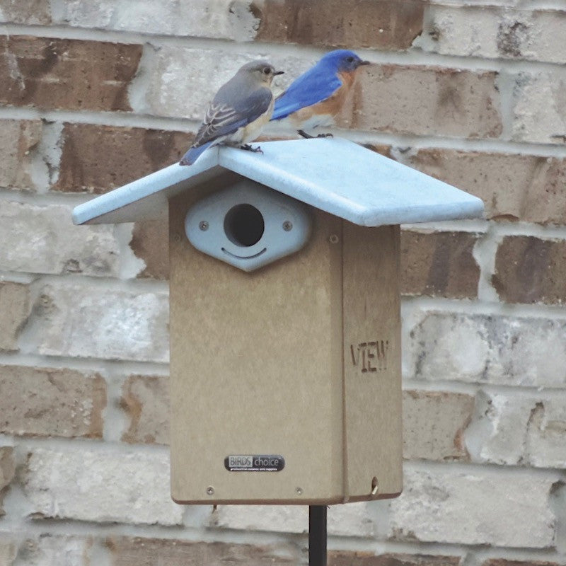 Recycled Bluebird House with Camera
