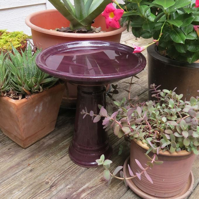 Ceramic Bird Bath Short Birdbath Short Pedestal