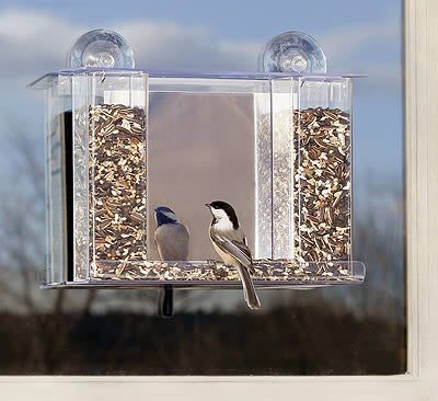 Window Bird Feeder Window Feeder Has Mirror Plastic