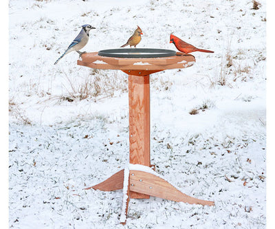 Heated Bird Bath for Winter Oasis