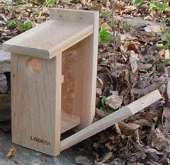 View Thru BlueBird House-NABS Approved