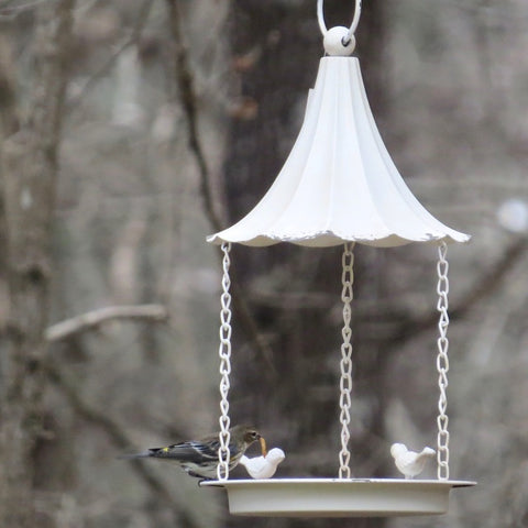 Weathered Fly-Thru Feeder or Bird Bath
