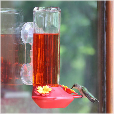 Window Mount Glass Hummingbird Feeder