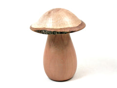 LV-3492  Dogwood & Live Oak Wooden Mushroom Trinket Box, Pill, Jewelry Box-THREADED