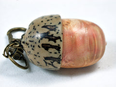 LV-3508 Box Elder Burl & Yollilo Palm Nut Wooden Acorn Pendant, Charm, Pill Holder-SCREW CAP