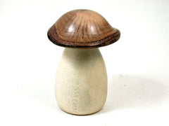 LV-3647  Holly & Live Oak Wooden Mushroom Trinket Box, Pill, Jewelry Box-SCREW CAP