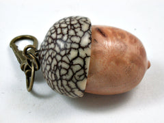 LV-3711  Laurel Sumac Burl & Betel Nut Acorn Pendant Box, Charm, Pill Holder-SCREW CAP
