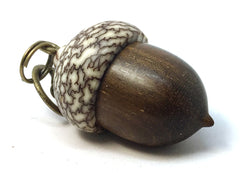 LV-4280  Suriname Ironwood & Betelnut Acorn Pendant Box, Charm, Pill Holder-SCREW CAP