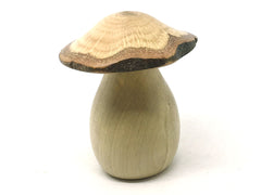 LV-4360 Canyon Live Oak cap & American Holly stalk mushroom threaded box