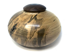 LV-4375 Ambrosa Maple with Black Walnut and Abalone Inlay Threaded Vessel