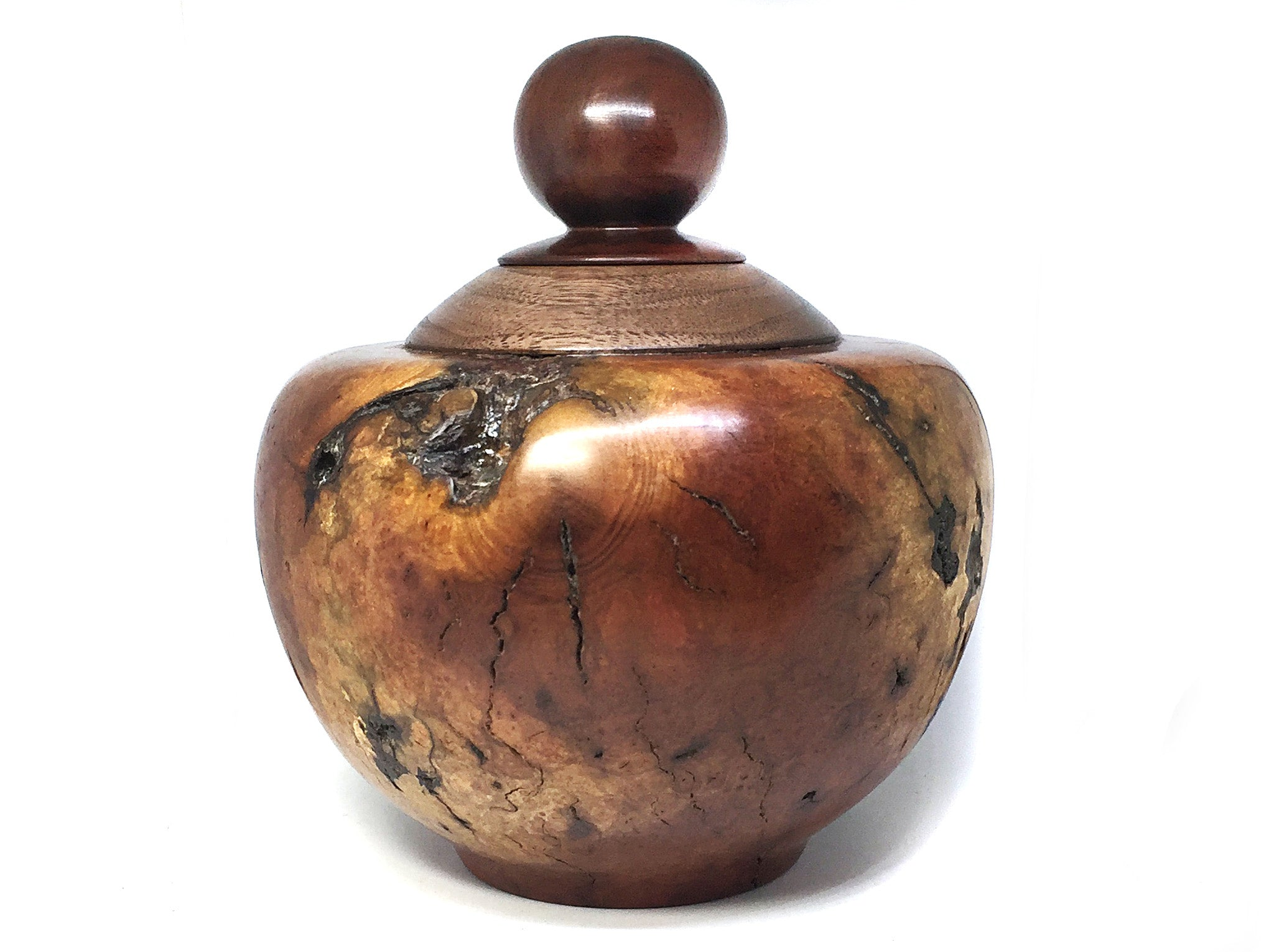 LV-4379  Manzanita Burl, Black Walnut and Manzanita wood cap-Threaded