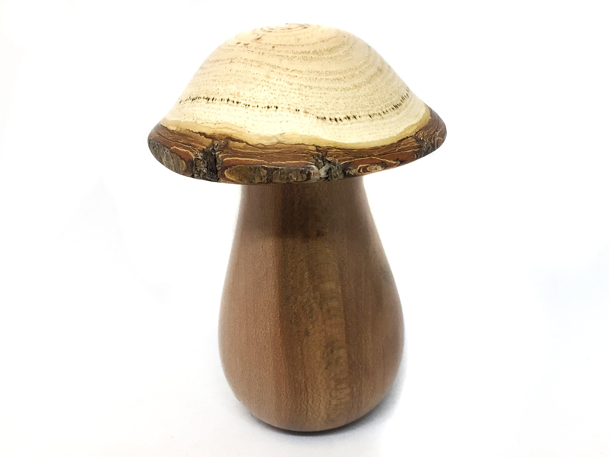 LV-4523  Golden Rain Tree cap with Dogwood stalk Wooden Mushroom Keepsake Box, Pill, Jewelry Box-SCREW CAP