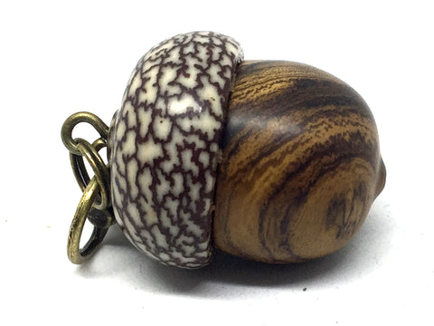 LV-4691 Desert Ironwood & Betelnut Acorn Pendant Box, Charm, Pill Holder-SCREW CAP