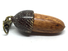 LV-4887 Afzelia & Betelnut Hand Turned Wooden Acorn Pill Box, Keepsake-SCREW CAP