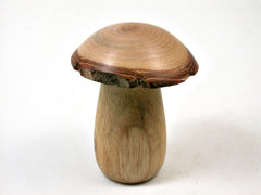 LV-3406 Threaded Mushroom Pill, Jewelry Box from Persimmon Wood and Golden Rain Tree