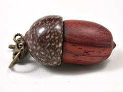 LV-3270  African Padauk & Betelnut Acorn Pendant Box, Charm, Pill Holder-SCREW CAP