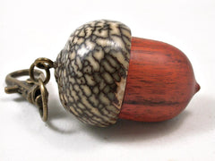 LV-3302  Sappanwood & Betelnut Acorn Pendant Box, Charm, Pill Holder-SCREW CAP