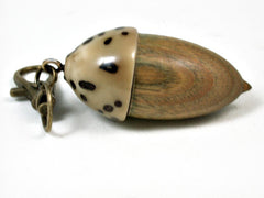 LV-2948  Acorn Pendant Box, Compartment Jewelry from Verawood & Palm Nut-SCREW CAP