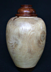 LV-408  New Zealand Ngaio Wood Turned Lidded Vase, Hollow Form, Wood Urn--RARE BEAUTY