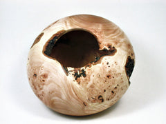 LV-1956 California Wild Lilac Burl  Wood Turned Pot, Hollow Form, Vase with Natural Edge & Void